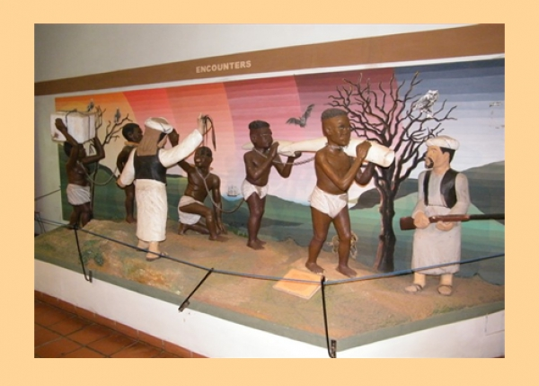 Livingstone Museum Research - History